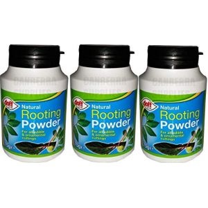 Doff Lot de 3 boîtes d'hormone de bouturage en poudre 75g (Onogo FR, neuf)