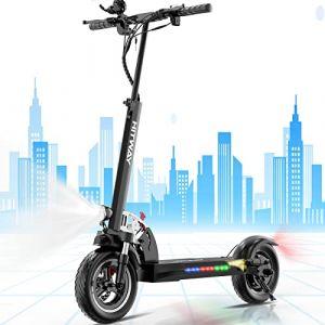 SOUTHERN WOLF Trottinette électrique, Trottinette électrique Adultes avec siège Amovible Pneu 10 Pouces 800W Scooter électrique | Scooter électrique Pliable avec écran (Black) (Black) (SOUTHERN-WOLF, neuf)