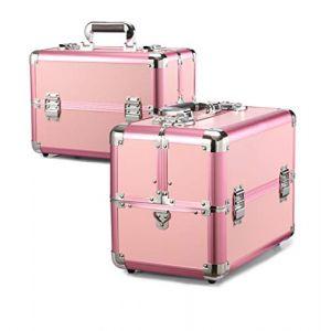 Mallette cosmétique en aluminium multifonctionnelle de valise professionnelle grande valise professionnelle,Pink (Wzq-UK, neuf)