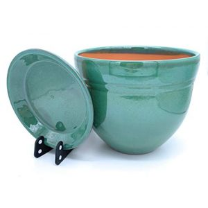 Sun Cakes Galla Pot de fleurs en céramique émaillée avec soucoupe, pour plantes succulentes, orchidées, Céramique, Vert, 20cm x 17cm (suncakes, neuf)