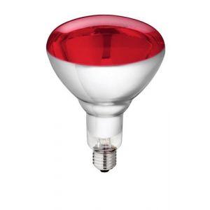 Philips - Lampe infrarouge 150w vis 8433 (prolight2010, neuf)