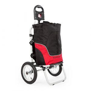 Duramaxx Carry Grey - Remorque pour vélo, Chariot Charge Max. 20kg, Sac de Transport Amovible, Tubes métalliques et Sac en Plastique, Transport Confortable, Noir & Rouge (Electronic-Star-FR, neuf)