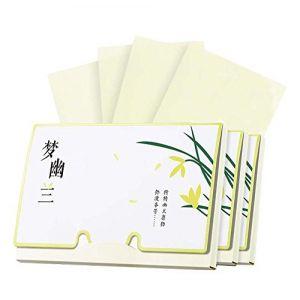 Papier buvard de contrôle d'huile de conception portative, Ylang parfum, 300 feuilles (Koala Superstore EURO, neuf)