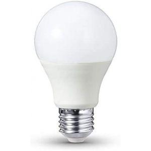 Ampoule LED E27 12 - 24 V Blanc chaud 8 W (LEDmich, neuf)