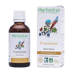 HERBIOLYS - Phytothérapie extrait de Framboisier Bio - 50 ml (BIVEA, neuf)