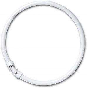 Osram FC 22 W/840 Tube Fluorescent 12 x 1 (Dependable Trading LTD, neuf)