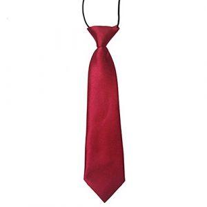 Couleur unie pour garçons enfants élastique Cravate marron bordeaux (Broadfashion, neuf)