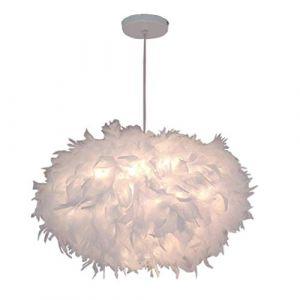 Lustre Suspension en Plumes Blanc E27 45CM, Plafonnier Luminaires Abat-Jour pour Chambre Salon Restaurant (Ampoule Non Inclus) (miracle life, neuf)