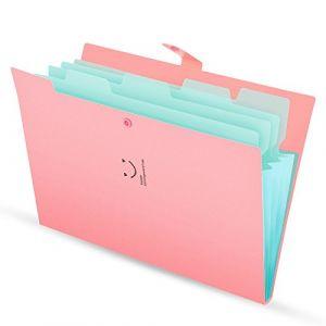 Classeur et trieur à documents format A4 en Polypropylène (PP) avec 5 compartiments imperméable, souple, et légère, fournitures de bureau et de scolaires en pink (KONVINIT, neuf)