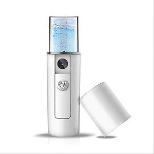 Brumisateur Portable Vapeur Face Meter Usb De Charge Portable Nano Vaporisateur Facial Humidificateur Pulvérisation Froide À La Main Compteur D'eau Outils D'entretien L1 (YangxiaoKang, neuf)