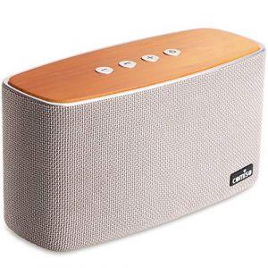 Enceinte Bluetooth Speaker Portable 30W, COMISO Haut-Parleur Bluetooth sans Fil 3D Digital Sound 20 Heures d'autonomie en Lecture, Compatibilité iphone, Android, Smartphone (Gris) (Comiso Official Store, neuf)