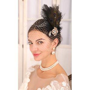 Sither Serre-tête en voile blanc en voile avec bandeau paon vintage des années 1920 et 20 pour déguisement fête Halloween (clip+voile blanc) (Cathercing, neuf)