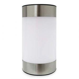Frostfire Lazesol Lampe solaire de jardin et de table givrée (Frostfire Design, neuf)