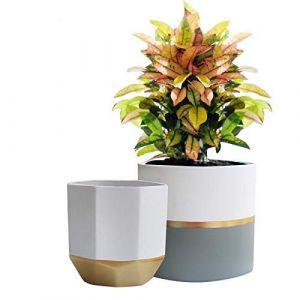 La Jolíe Muse Pots de Fleurs en Céramique Pots de Plantes pour Intérieur & Extérieur Maison Décor Bureau Jardinière Salon Pack de 2 Pot Rond & Pot Octogonal 16.5cm (Fragrant Home, neuf)