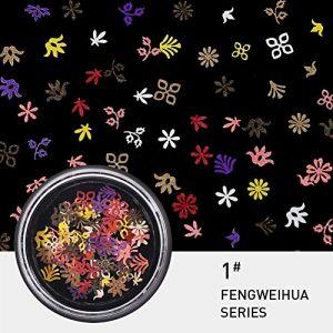KISSION Nail Art Décorations De Paillettes Couleurs Flocons Nail Kit 3D Paillettes Manucure DIY Nail Art Kit, Film Stickers Paillettes Sequin DIY Outils De Décoration (1#) (Lucktar, neuf)