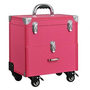 Maquillage Valise Trolley Vanity Train cas rangement Vanity Case rangement coiffure organisateur pour salon Nail artiste de maquillage professionnel,Pink (AND DOG, neuf)
