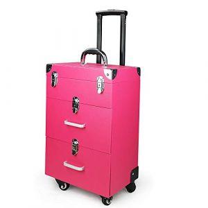 Trolley de maquillage, Profession Chariot cosmétique Boîte à outils Case avec tiroir universel roue de grand volume de cas de maquillage (WGDDDMC, neuf)