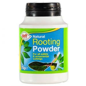 Hormone de bouturage en poudre Doff, 2 pots de 75g - Favorise la pousse de racines saines et robustes sur les boutures (Onogo FR, neuf)