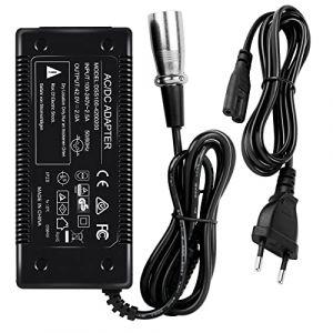 42V 2A Adaptateur Secteur Chargeur pour 36V 10AH Lithium-ion Scooter électrique Rechargeable E-bikes (Wilktop, neuf)
