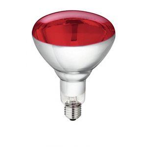 Lot de 5Ampoule infrarouge en verre trempé PHILIPS 250W Rouge e 27Ampoule Lampe infrarouge Ampoule pour spot chauffant lumière rouge Lampe chauffante à infrarouge (Tierzucht24, neuf)