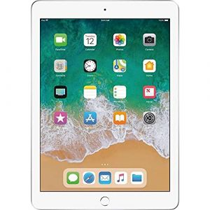iPad (5th generation) Wifi 32 Go - Argent - Grade Premium (Freestyll_iPads, neuf)