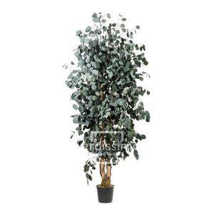 Arbre Populus vert stabilisé