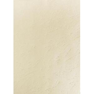 2785C - Paquet de 100 plats FOREVER, pour A3, carte 270 g/m², grain cuir, coloris ivoire