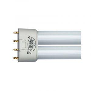 Tube Fluo-compact de luminothérapie