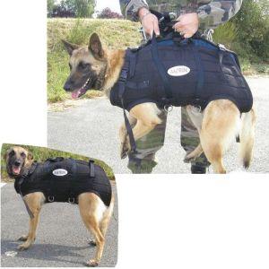 Harnais hélitreuillage Pro, pour chien