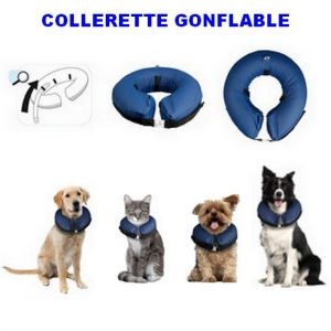 Collerette gonflable