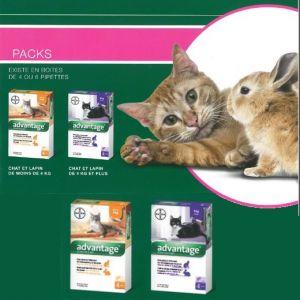 Advantage, traitement anti puces pour chat