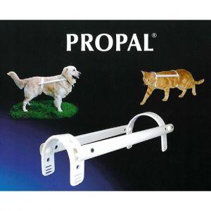 Propal - système de contention