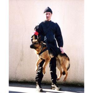 Harnais de portage intervention, pour chien