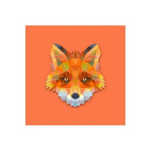 Tableau Animaux Renard Orange 80X80 AMY
