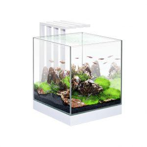 Aquarium Nexus 25 LED Blanc 22 L avec filtre CIANO