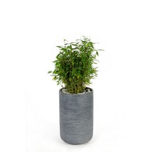 Pot rond STREAM  haut Anthracite Ø.32 x H.50 cm