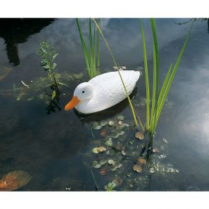 Canard sauvage blanc 38,5 cm