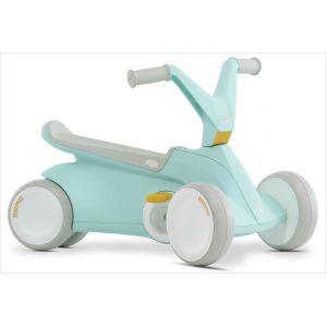 Porteur tricycle BERG GO2 vert