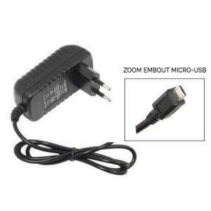 Transformateur 220 Volts en 5 Volts et 1Ampère embout micro USB