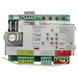 Carte électronique Avidsen CA2B9 Bras - 580034