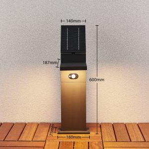 Borne LED solaire Silvan avec détecteur, 60 cm