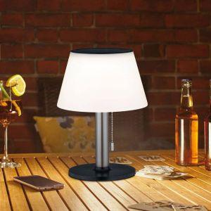 Paulmann Lillesol lampe à poser solaire extérieur