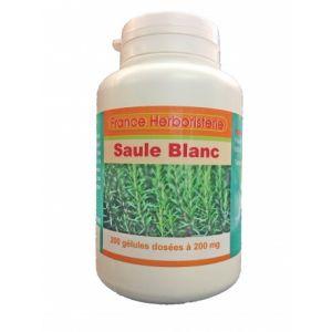 GELULES SAULE BLANC ecorce 200 gélules dosées à 200 mg poudre pure.