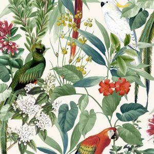 Papier peint Oiseaux tropicaux Blanc et vert - Dutch Wallcoverings