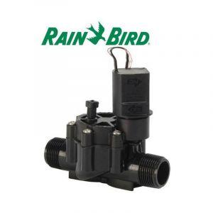 Electrovanne MM 1' Rain Bird 24 Volts Série DV - ACHAT UTILE