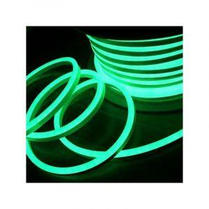 Leclubled - Néon LED Flexible lumineux   Vert - 10m