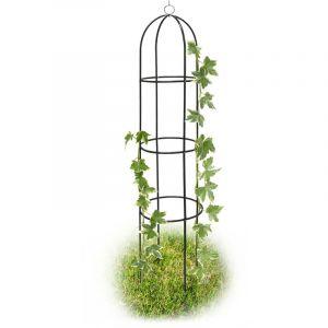Relaxdays Support tuteur plantes grimpantes et rosiers arcade pour roses armature pour plantes grimpantes arceau de jardin arche de jardin métal 190cm - 4052025100193