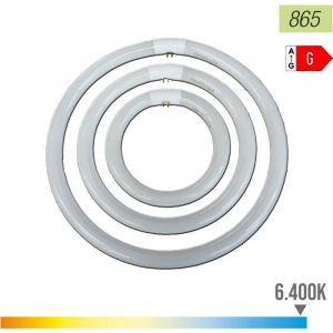 Circulaire Fluorescent Tl-E 40W / 865
