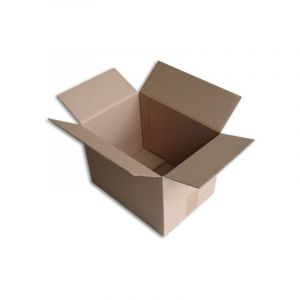 Lot de 100 Boîtes carton (N°37) format 305x215x220 mm - ENVELOPPEBULLE
