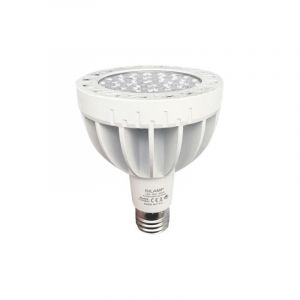 Ampoule E27 LED Blanche 35W 220V PAR30 30LED - Blanc Froid 6000K - 8000K - SILAMP